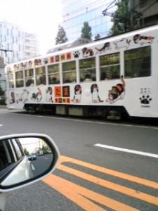 岡山の市電は貴志川電鉄と企業間の縁があり,タマ電車が走っています(もちろんタマ駅長はいません)。